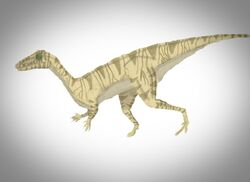 Procompsognathus triassicus colored by animaniac888-d4uce3n.jpg