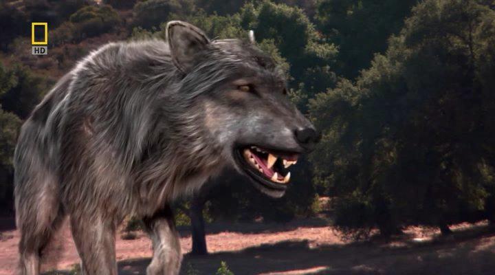 Ужасный волк.jpg
