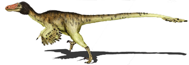 Адазавр