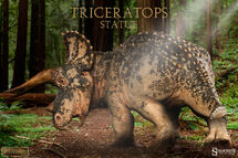 Triceratops image 02