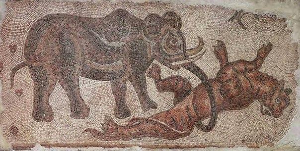 Сирийский слон