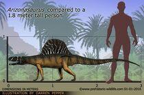 Аризонозавр8