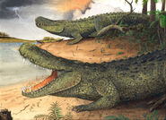 Purussaurus-m