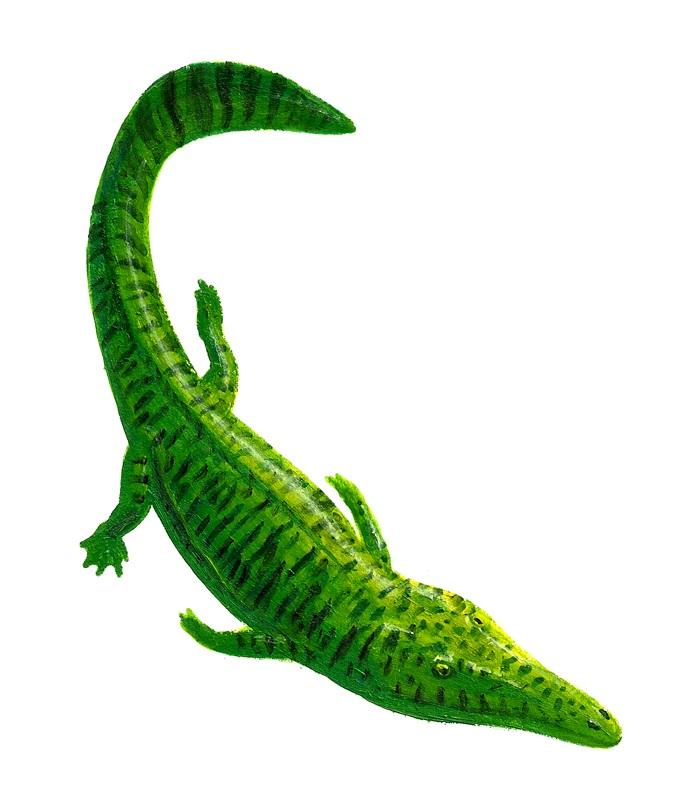 Кашмирозавр