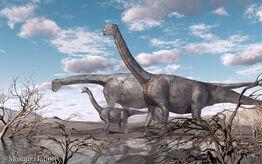 Camarasaurus20111222.jpg