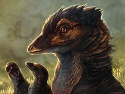 Evosaur jinfengopteryx study by mrxylax-dbw9rd1