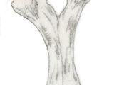 Эвскелозавр