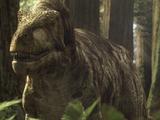Дасплетозавр