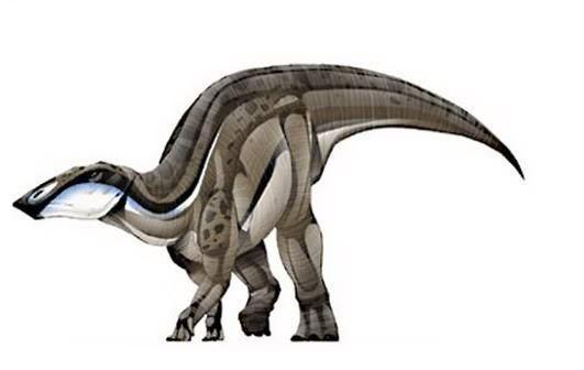 Наашоибитозавр