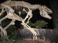 Аппалачиозавр 1