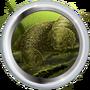 Панцирь скутозавра