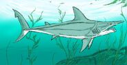 Parahelicoprion by enneigard