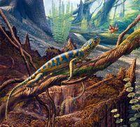 510 426 Hylonomus lyelli illustrati