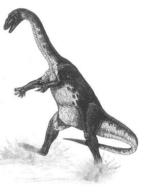Аммозавр
