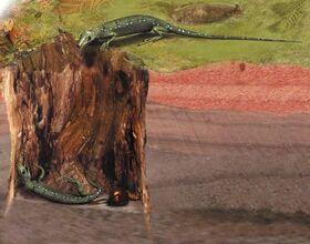 Picture of the day hylonomus lyelli 1 703 (1).jpg