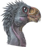 Инцизивозавр 3