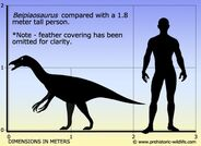 Beipiaosaurus-size b016