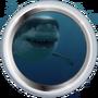 Большой зуб