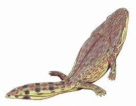 Метопозавр