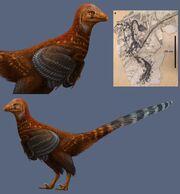 Jianianhualong tengi-novataxa 2017-Xu-Currie-Pittman-et al-reconstruction Julius T Csotonyi.jpg