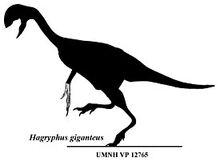 275px-Hagryphus.jpg