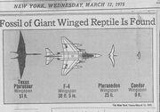 Newspaper, 1975.jpg