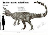 Зухозавр1