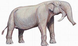 Wpid-zhivotnye-nemnogo-napominavshie-sovremennyh-slonov i 2