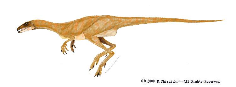 Лесотозавр 1.jpg