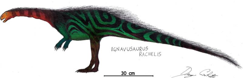 Игнавузавр