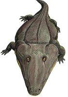 Мастодонзавр гыгы