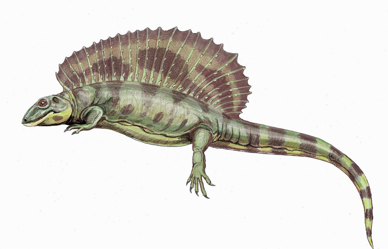 Янтазавр