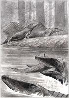 Секодонтозавр7