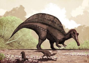 Спинозавр1.png