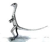Лангобардизавр3.jpg