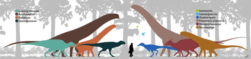 800px-Allen Formation Fauna.png