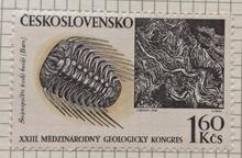 Trilobit Selenopeltis buchi buchi.png