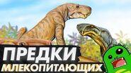 Предки млекопитающих - Синапсиды и пермский период - Горгонопсы, дейноцефалы и цинодонты