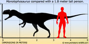 Monolophosaurus-size.jpg