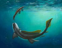 Orthacanthus and Xenacanthus by Esther van Hulsen Prehistori