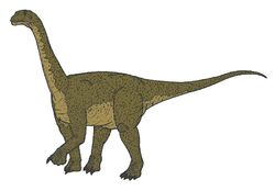 Camarasaurus 05874 ac3d