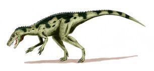 Herrerasaurus BW 79d2