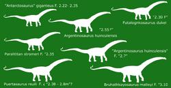 Titanosauria