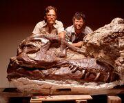 Tyrannosaurus Sue 04.jpg