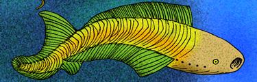 Анаспиды