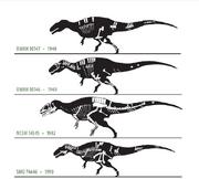 Acrocanthosaurus specimen.png