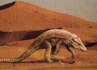 Armadillosuchus3
