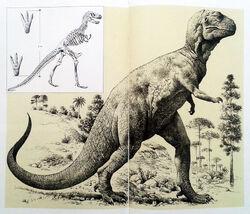 Enciclopedia de ciencias naturales Aguilar 1970s.jpg