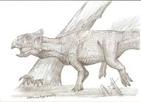Leptoceratops gracilis by teratophoneus-d4klwnd 7524