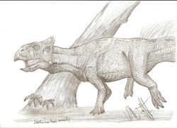 Leptoceratops gracilis by teratophoneus-d4klwnd 7524.jpg
